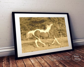 Horse print sepia horse photography equestrian art horse wall print printable horse photo print horse Poster print contemporary art