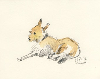 Dog drawing #2 ORIGINAL /Also custom order/ pencil and watercolor drawing, a portrait of a dog  8 x 6 inches, by Catalina S.A.