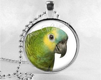 PARROT Necklace, Blue Front Amazon, Parrot Pendant, Parrot Jewelry, Amazon Parrot, Bird Necklace, Glass Photo Art Necklace, Exotic Bird