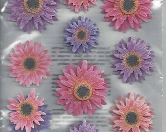 Recollections ~ Flower Dimensional Stickers ~ NIP
