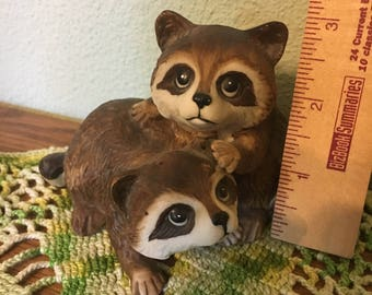 Raccoon Brothers