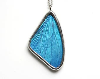 Real Butterfly Wing Necklace. Blue Morpho Necklace. Blue Butterfly Necklace. Insect Jewelry. Butterfly Necklace. Morpho Menelaus Necklace