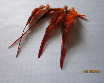 """2"""" strip of Strung Rooster Saddles Chinchilla feathers in ORANGE with black - individual feather about 5"""""""
