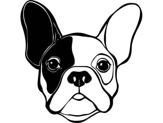 french bulldog 4 dog breed k9 animal pet puppy paws canine
