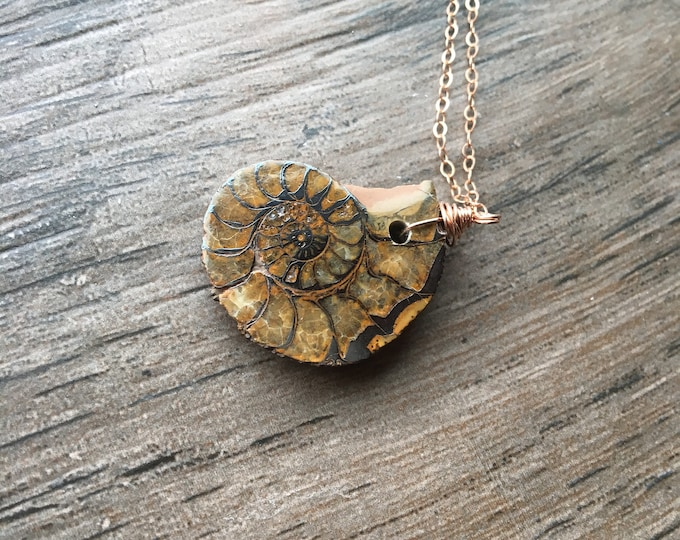 Ammonite Fossil LIttles Necklace Old Gift Unique Rose Gold Filled Healing Chakra Energy Gemstones Inspirational Gift