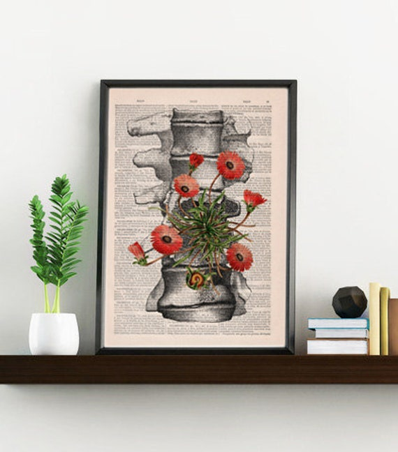 Human anatomy vertebrae poster print - Wall decor, anatomical art , Wall hanging art. Unique Gift- SKA097