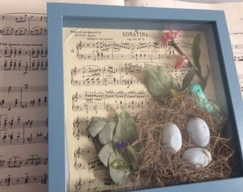 Bird's Nest in a Shadow Box Moss Nest Dried Greenery Sheet Music Fake Flowers