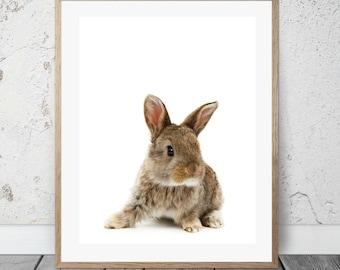 Bunny, 8x10 printable, nursery art, forest animals