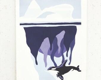 artic orca screenprint