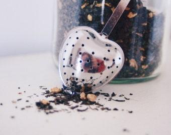 Ginger & Mint Brew teabelly Organic Artisan Herbal Tea Tisane Infusion