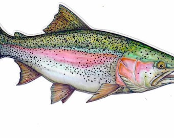 """8"""" Rainbow Trout Decal"""