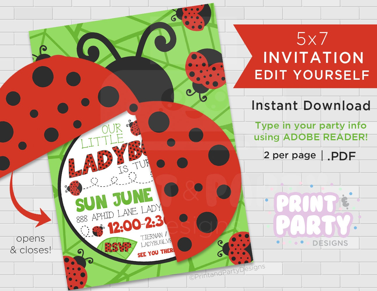 Printable Girls\'s Ladybug Birthday Party Invitations