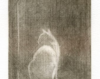 """Ghost"" engraving. Ghost. Mezzotint. Mezzotint. Cat print. Cats. Printmaking. Prints and etchings."