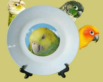 "Yellow-headed Amazon Parrot Blue Sky Clouds White Decorative Ceramic 8"" Plate and Display Stand"