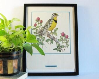 Fenwick Lansdowne Bird Art Print Set - Vintage Art Portfolio Book of Lithograph Prints - Botanical Prints - Country Cottage Home Decor