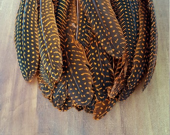 Dyed Orange Guinea Cruelty Free Feathers Real Feathers #732