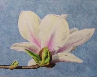 tulip tree blossom original Inktense painting