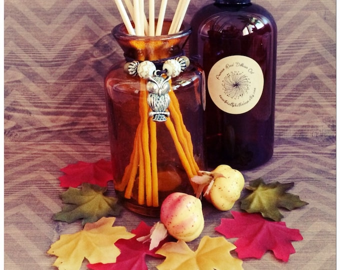 Owl Charm Reed Diffuser Gift Set/Choose From Several New Fall Scents/Orange Cranberry/Sweet Pumpkin Spice/Caramel Apple and More!