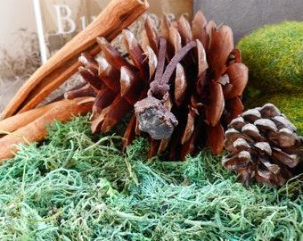 Electroformed Rough Tanzanite Necklace, Electroforming copper with Tanzanite, Small Raw Tanzanite