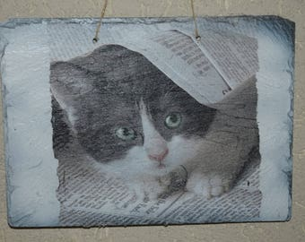 Slate theme table: cat under the paper