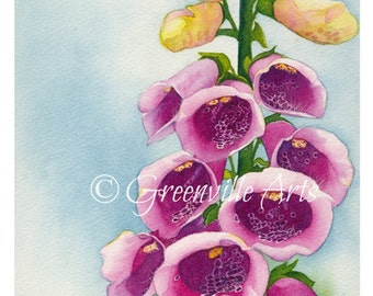 5x7 Foxglove Print of watercolor 5 by 7