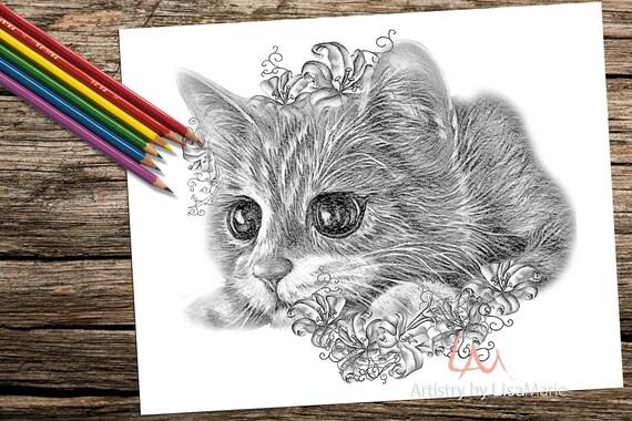 kitten fotoboekpagina volwassene kleurboek kleurplaat