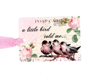 Vintage Style Bird Tags, Gift Tags, A Little Bird Told Me, Pink and White Tags, Bluebirdlane