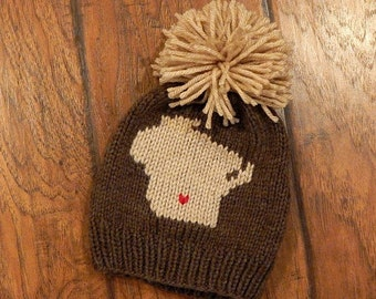 Wisconsin Hometown Knit Hat : Baby Hat, Toddler Hat, Child Hat, Adult Hat