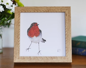 Framed Robin Print - robin redbreast - british bird