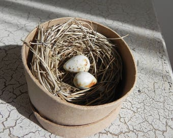 tiny bird nest with 2 porcelain eggs spring easter display in gift box