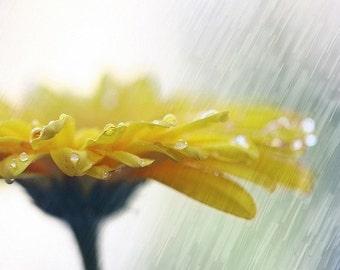 I'll take endless showers..., fine art  photograph, print 8x8
