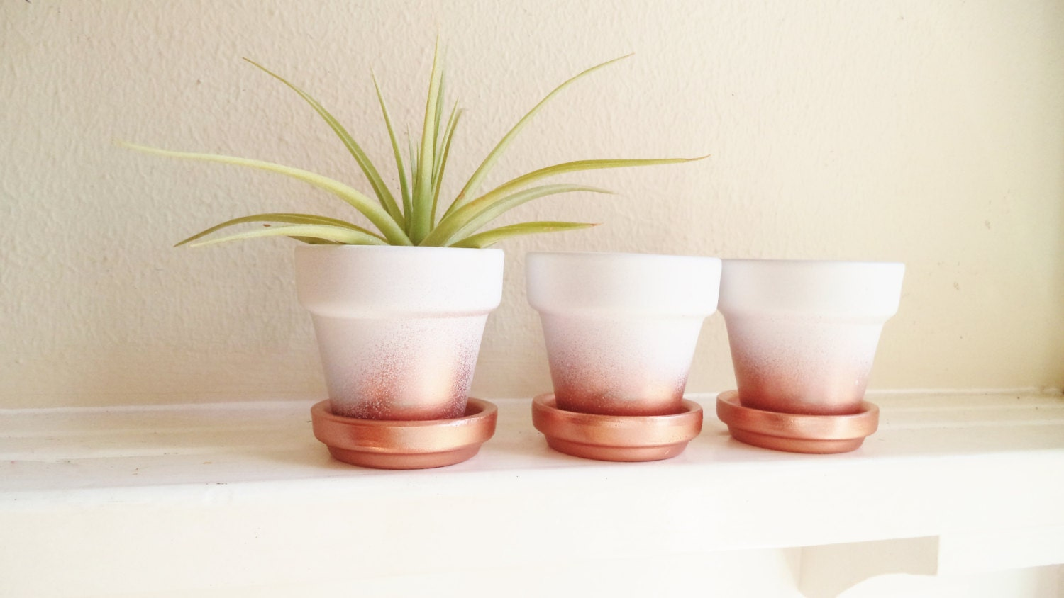 Wedding favors, copper mini planters, rose gold ombre metallic ...