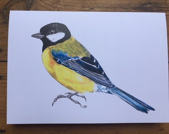 GREAT TIT greetings card // digital print from an original drawing // A5