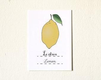 Yellow Lemon 5x7 French Nursery Art Print Baby boy- Winter Fruits Series Botanical Chart Nature Food Home decor