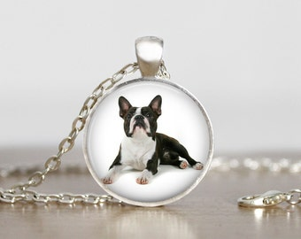 I Heart My Boston Terrier Dog Pendant Necklace or Keychain