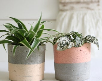 Concrete Planter – Gift For Her – Concrete Pot – Plant Pot –Indoor Planter - Industrial Design-Botanical Gift -Green Planter - Peach Planter