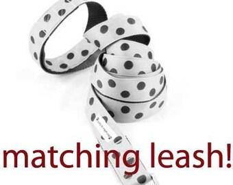 5ft Nylon Leash - You choose your ribbon
