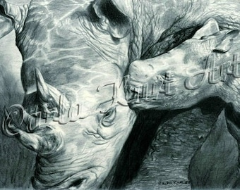 RHINO LOVE by Carla Kurt Signed print