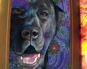 greeting card print of original art-  black lab dog  Zentangle