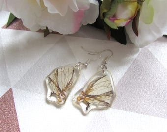 Dragon wing inspired earrings, Butterfly earrings, Resin butterfly,  Resin Earrings, , butterfly wings, Taxidermy, Taxidermy jewellry