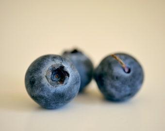 Fruit art blueberry print, modern kitchen decor, food photography, still life art for kitchen, blueberry photo, kitchen dining room artwork