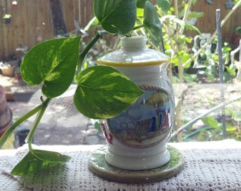 Welcome Aboard Ceramic Vase with Live Philodendron Clean Air Plant