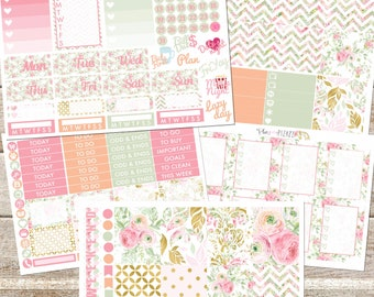 PINK SPRING Planner Stickers Individual Sheets sized for the Erin Condren Life Planner