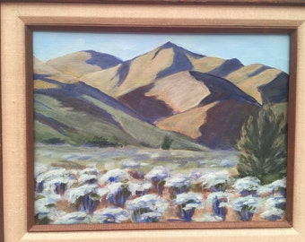Original 9x12 acrylic painting of desert sage in deep shadows.