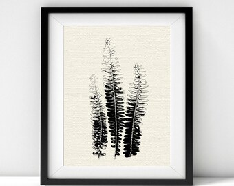 Fern Fronds, Black and White Art, Botanical Art, Botanical Prints, Ferns, Leaves, Minimalist Poster, Downloadable Prints, Nature Prints, Art