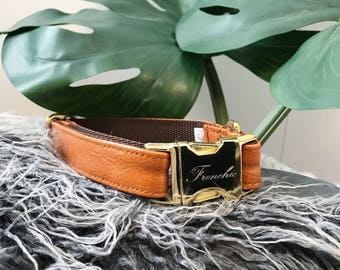 Vegan leather dog collar Swing