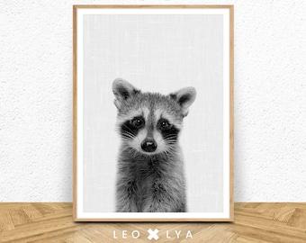 Raccoon Print, Black and White, Woodland animals, nursery printable art, raccoon wall art, nursery wall art, nursery decor, printable decor