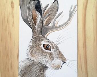 Wild Hare Jackalope Illustration
