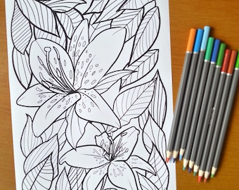 Adult Coloring Sheet Lily