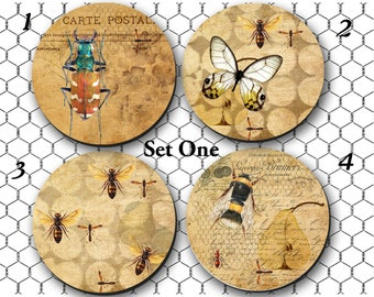 Coasters, drink coasters, Entomologist Gift, Arthropods Gift, Cottage addition, Wine Coaster, bugs, beetles, butterflies (0018)